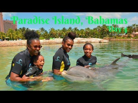 Swimming with the dolphins in Atlantis!! | Bahamas Day 4 | Travel Vlog