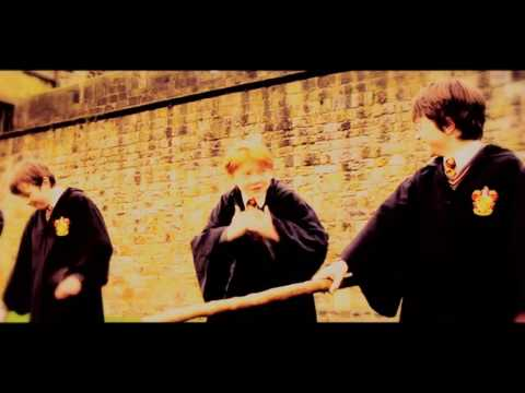 Harry Potter 2CELLOS they don't care about us
