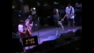 Pearl Jam - 1995-07-11 Chicago, IL