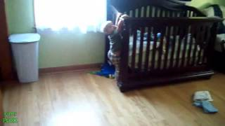 Babies Escape Their Cribs Compilation 2013 New Hd]