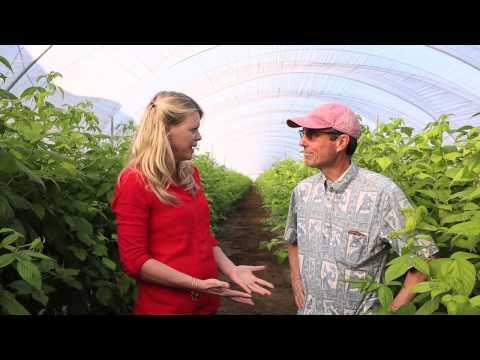 SEEAG VC January Farmer of the Month / Martin Gramckow