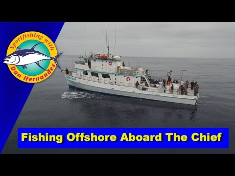 Catching Yellowtail Offshore Aboard The Chief | SPORT FISHING