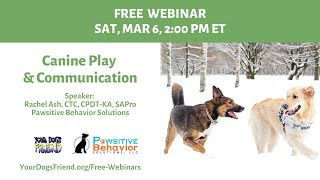 Canine Play & Communication  3/6/21