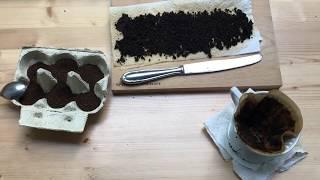 Kaffeesatz als Dünger für Pflanzen auf dem Balkon, im Hochbeet und im Topf