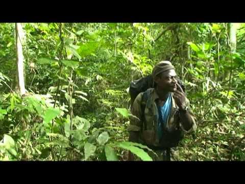 MTT Best of Gabon