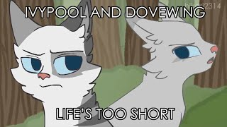 Ivypool and Dovewing: Life