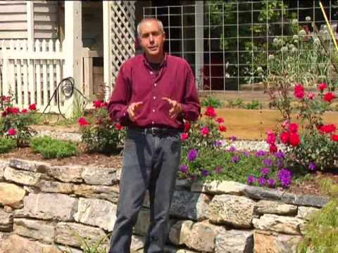 virginia farm bureau in the garden slope gardens youtube. Black Bedroom Furniture Sets. Home Design Ideas