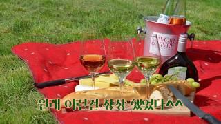 새싹 비건의 감성 피크닉^^