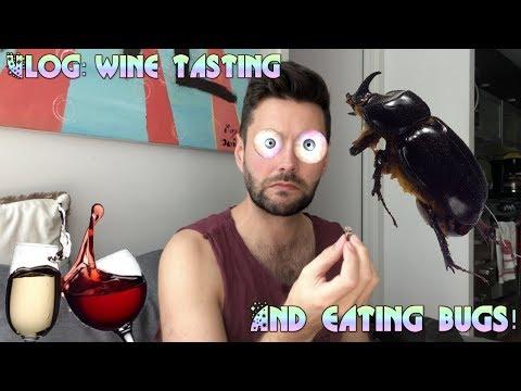 Vlog - Wine tasting and eating bugs