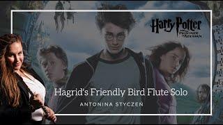 Harry Potter | Hagrid's Friendly Bird Flute Solo | Antonina Styczen