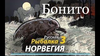 Бонито   БЖ русская рыбалка