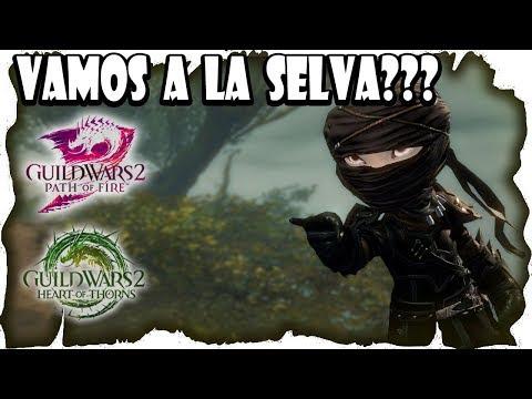 Vamos a la Selva?? Guild Wars 2 de colegueo | Gameplay Español MMOrpg PC