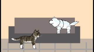 Кот, пёс и человек