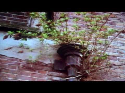The Dubliners Dublin (Full Film/Movie)