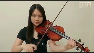 Amy Shark - I Said Hi(Violin Cover) Video