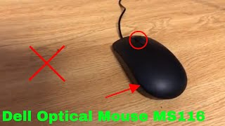✅ How To Use Dell Optical Mouse MS116 Review