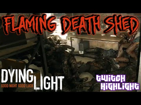 dying of the light stream