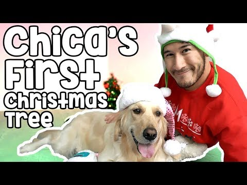 CHICA'S FIRST CHRISTMAS TREE