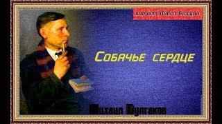 М  Булгаков  Собачье сердце  читает Павел Беседин  аудикнига