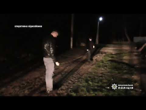 На Тернопільщині чоловік, захищаючи себе та матір, смертельно травмував одного із шести нападників