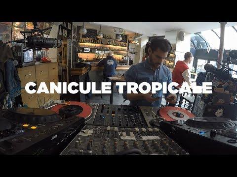 Canicule Tropicale •