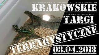 Krakowskie Targi Terrarystyczne 08.04.2018 + nowe ptaszniki