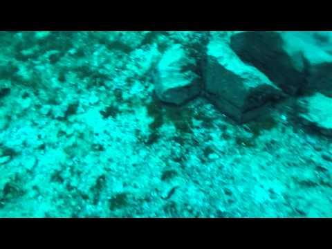 Dive 16. Dec 28th 2014. Capernwray Dive Centre, UK.