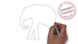 Как нарисовать поэтапно серого веселого слона карандашом(Как нарисовать картинку поэтапно простым карандашом за короткий промежуток времени. Видео рассказывает..., 2014-06-29T04:14:20.000Z)