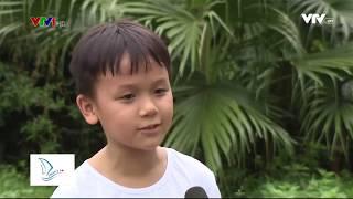 [Vì Tầm Vóc Việt] - Khóa học kĩ năng sinh tồn cho trẻ Survival Kid-Dream&Do School