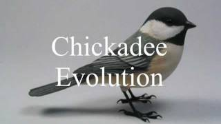 Chickadee Evolution Wood Carving