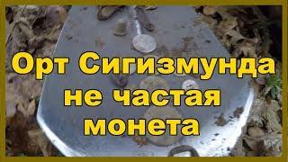 Находка монета Орт Сигизмунда  Средневековое поселение в лесу