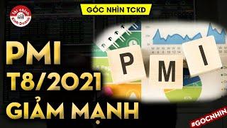 Chỉ số PMI tháng 8/2021 giảm mạnh kỷ lục, công nghiệp gặp khó vì sao?