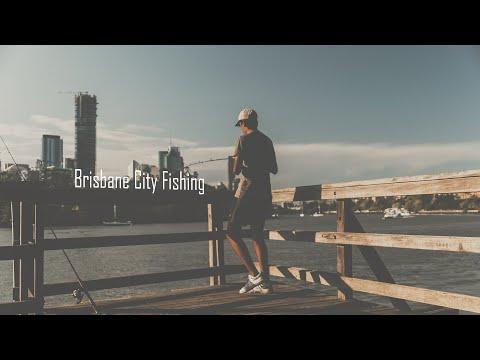 CATCHING FISH!!! In The City (Brisbane City Fishing)