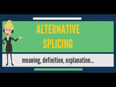 What is ALTERNATIVE SPLICING? What does ALTERNATIVE SPLICING mean? ALTERNATIVE SPLICING meaning