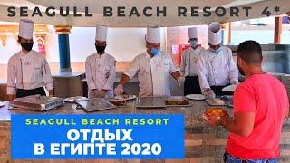 Отдых в Египте 2020 отель SeaGull Beach Resort 4 обзор в условиях пандемии