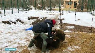 Man en beer zijn beste maatjes: 'Hij is lief en intelligent' - RTL NIEUWS