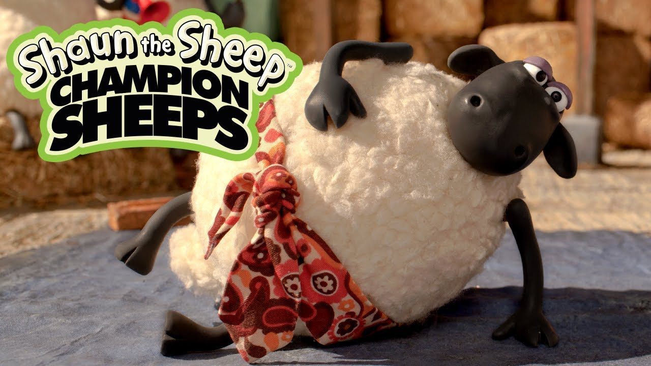 Nhu đạo | Championsheeps | Những Chú Cừu Thông Minh [Shaun the Sheep]