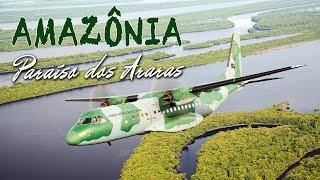 Amazônia: Paraíso dos Araras