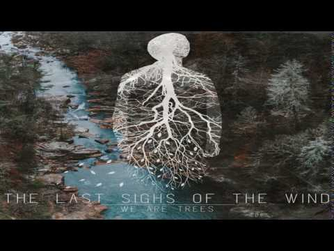 The Last Sighs Of The Wind - We Are Trees (Full Album)