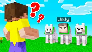 Which DOG Is The REAL JELLY? (Minecraft Guess Who)