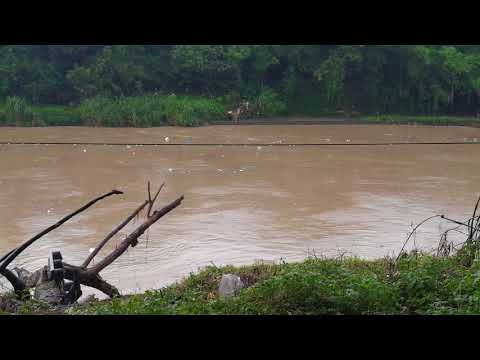 KLANG RIVER-SUNGAI KLANG-巴生河