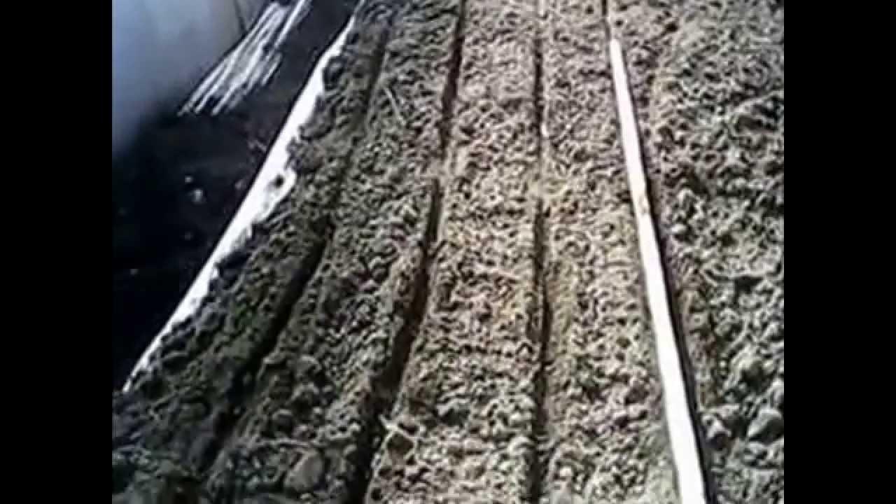 Чернушка, семена лука - YouTube
