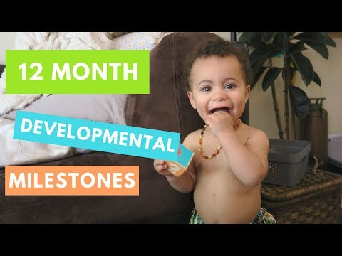 1 Year Old Typical Developmental | Developmental Milestones