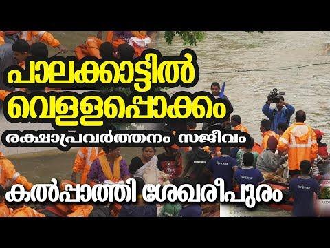 #Flood at Palakkad 2019 august 9 - Flood Rescue at Kalpathi Palakkad