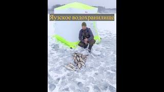 Ночная Рыбалка на Яузском Водохранилище Двое Суток на Льду