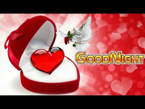 Good Night Shayari Hindi, Images/Photos/WhatsApp Status Video