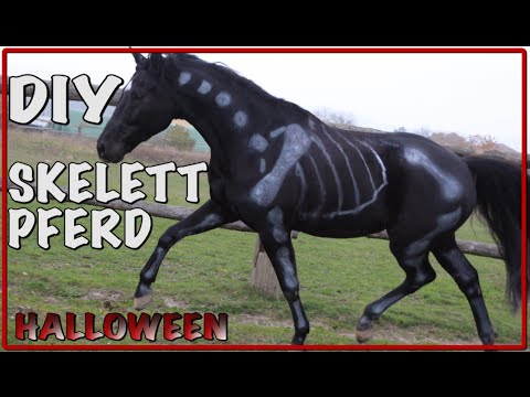 diy skelett pferd halloween youtube. Black Bedroom Furniture Sets. Home Design Ideas