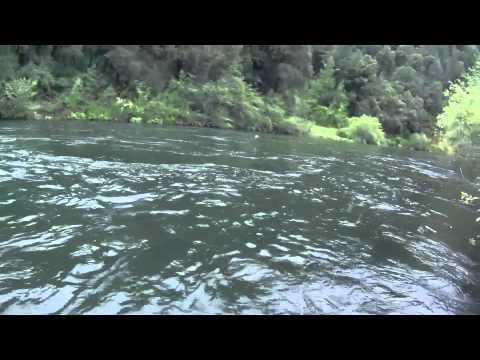 Fly Fishing Bollibokka McCloud River Spring 2010