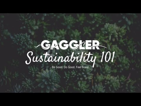 The Gaggler | Living | The Battle Against Climate Change With The Environment Agency Abu Dhabi