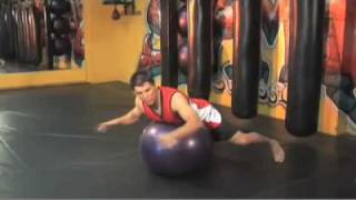 Mixed Martial Arts For Dummies author Frank Shamrock on Bettering your Balance with Ball Training